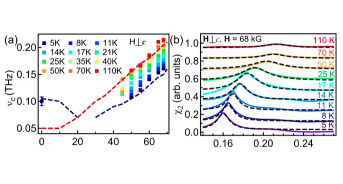 Using time-domain THz spectroscopy, we measure the low-energy EM response of the spin-1 ferromagnetic spin chain NiNb<sub>2</sub>O<sub>6</sub> as a function of temperature and external magnetic field.