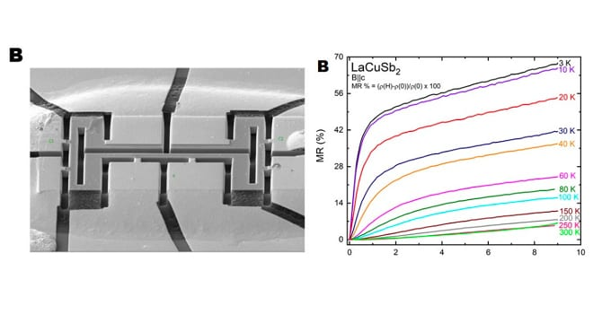 We predicted and then experimentally showed that LaCuSb<sub>2</sub>, previously reported to be superconducting, hosts Dirac fermions with an effective mass of 0.06 m<sub>e</sub>.