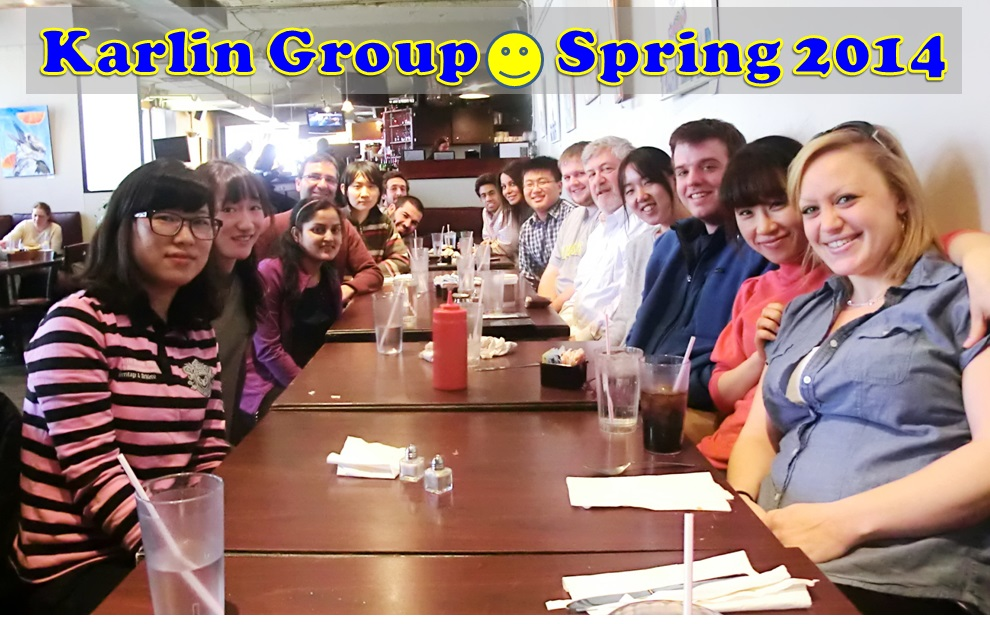 Karlin_Group_Pic1_2014