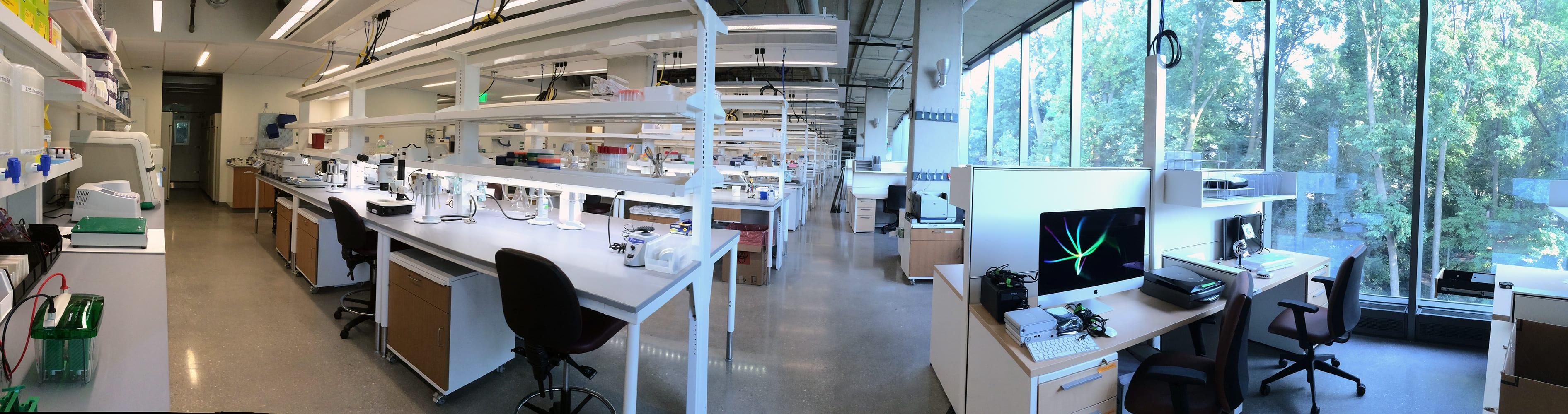 inside_lab