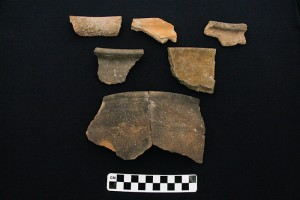 Mittani period Cooking Ware sherds.