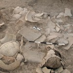 Middle Bronze pottery in situ.