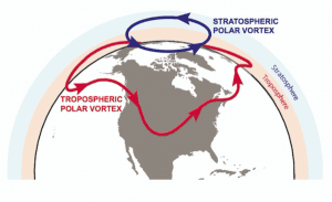 vortex-schematic